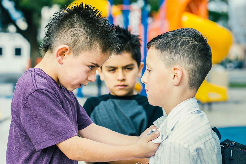 Bullying, ο θύτης